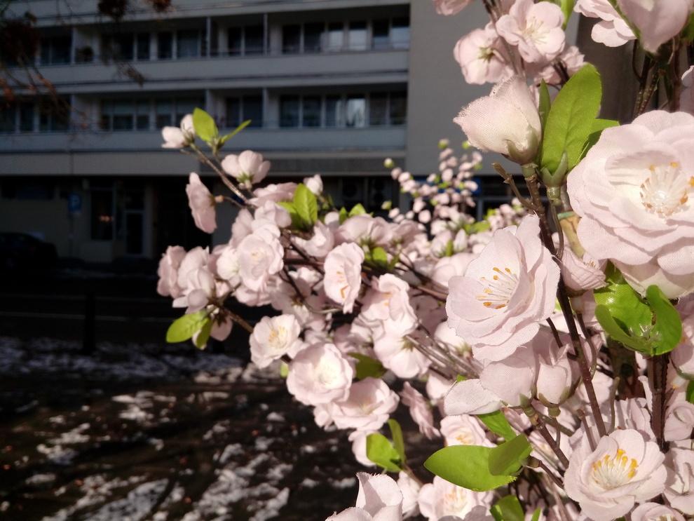 6_wiko_ufeel_foto_m.jpg