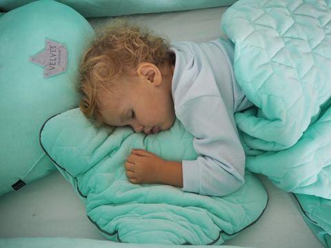 Mid Bed Pillow Velvet 30x40cm