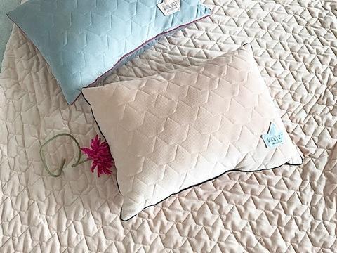 Big Pillow Velvet 40x50cm