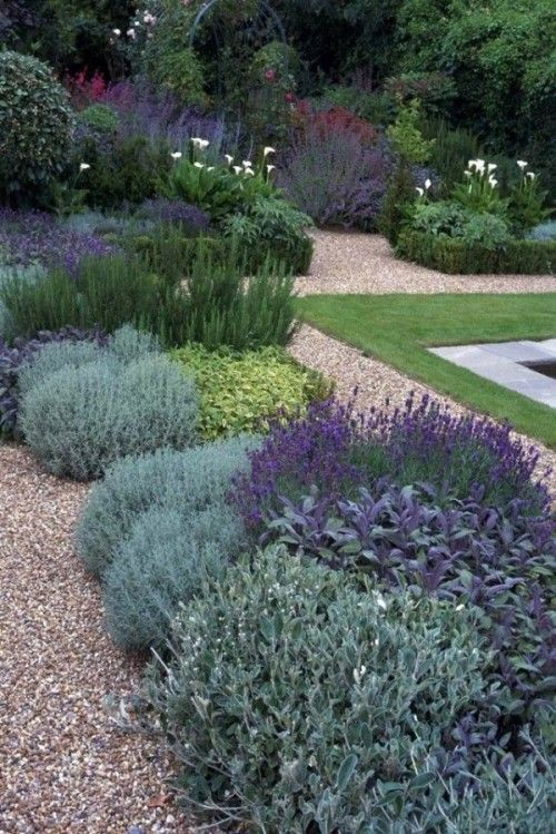Rośliny i zioła w ogrodzie