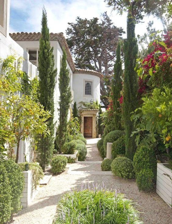 Rośliny do ogrodów śródziemnomorskich