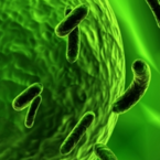 Unlocking the potential of the microbiome